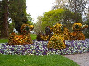 Остров Майнау — цветочное королевство